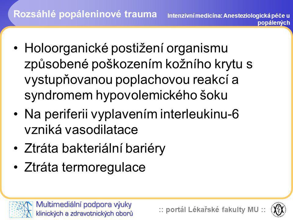 :: portál Lékařské fakulty MU :: Rozsáhlé popáleninové trauma Intenzivní medicína: Anesteziologická péče u popálených Holoorganické postižení organism