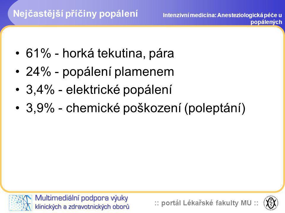 :: portál Lékařské fakulty MU :: Nejčastější příčiny popálení Intenzivní medicína: Anesteziologická péče u popálených 61% - horká tekutina, pára 24% -