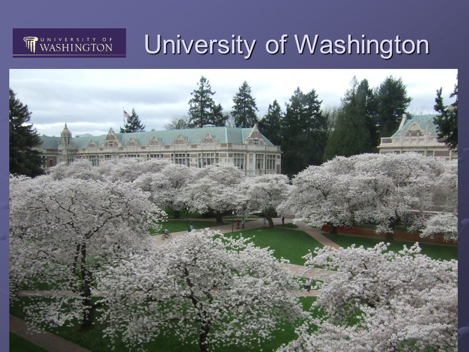 University of Washington Public research university programs in all fields 40 k students bachelor program (3-4yrs) major/minor major/minor joint projects joint projects master/PhD programs (5yrs)