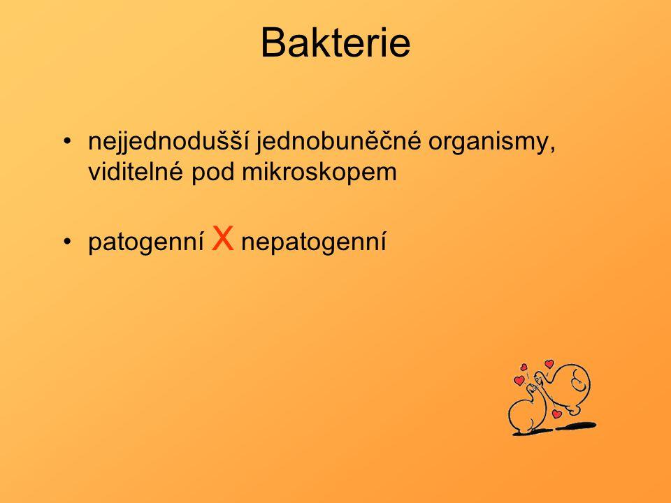 Bakterie nejjednodušší jednobuněčné organismy, viditelné pod mikroskopem patogenní X nepatogenní