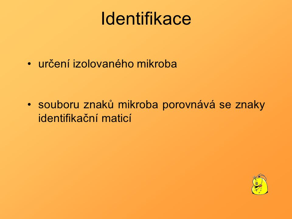 Identifikace určení izolovaného mikroba souboru znaků mikroba porovnává se znaky identifikační maticí