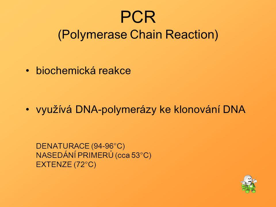 PCR (Polymerase Chain Reaction) biochemická reakce využívá DNA-polymerázy ke klonování DNA DENATURACE (94-96°C) NASEDÁNÍ PRIMERŮ (cca 53°C) EXTENZE (7