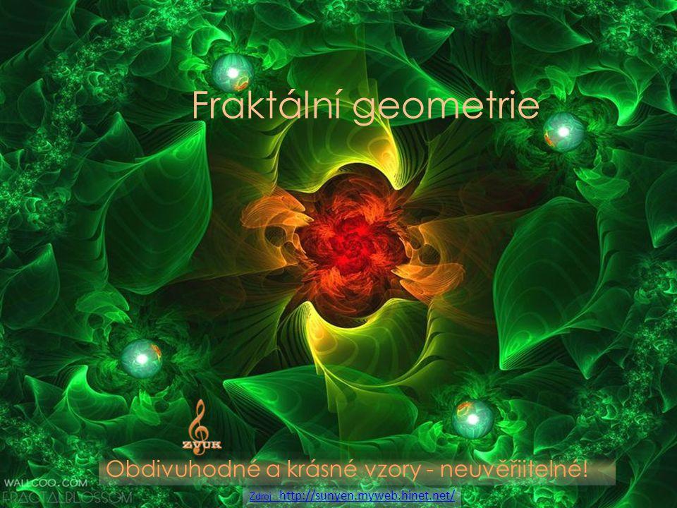 Fraktální geometrie Obdivuhodné a krásné vzory - neuvěřiitelné.
