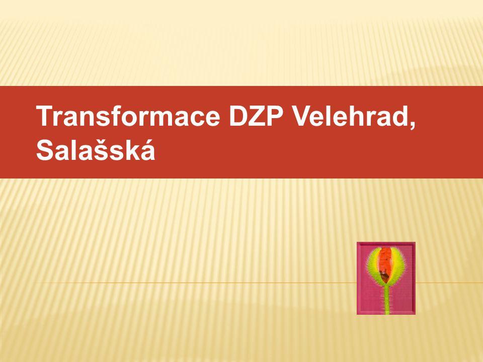 Transformace DZP Velehrad, Salašská