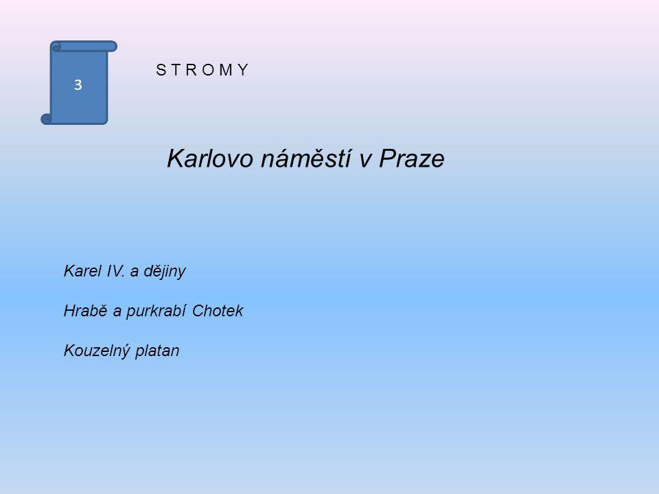 3 S T R O M Y Karlovo náměstí v Praze Karel IV. a dějiny Hrabě a purkrabí Chotek Kouzelný platan