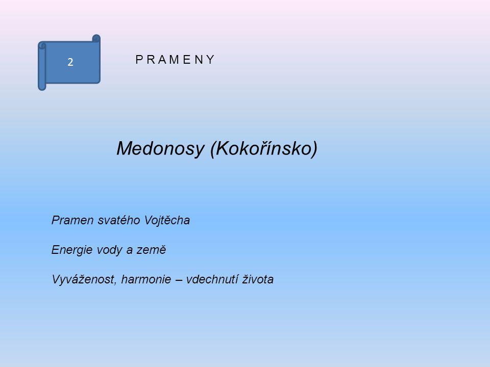 2 P R A M E N Y Medonosy (Kokořínsko) Pramen svatého Vojtěcha Energie vody a země Vyváženost, harmonie – vdechnutí života