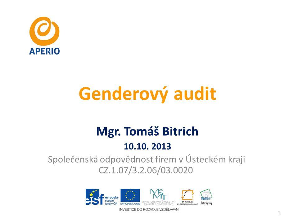 Genderový audit Mgr. Tomáš Bitrich 10.10. 2013 Společenská odpovědnost firem v Ústeckém kraji CZ.1.07/3.2.06/03.0020 1