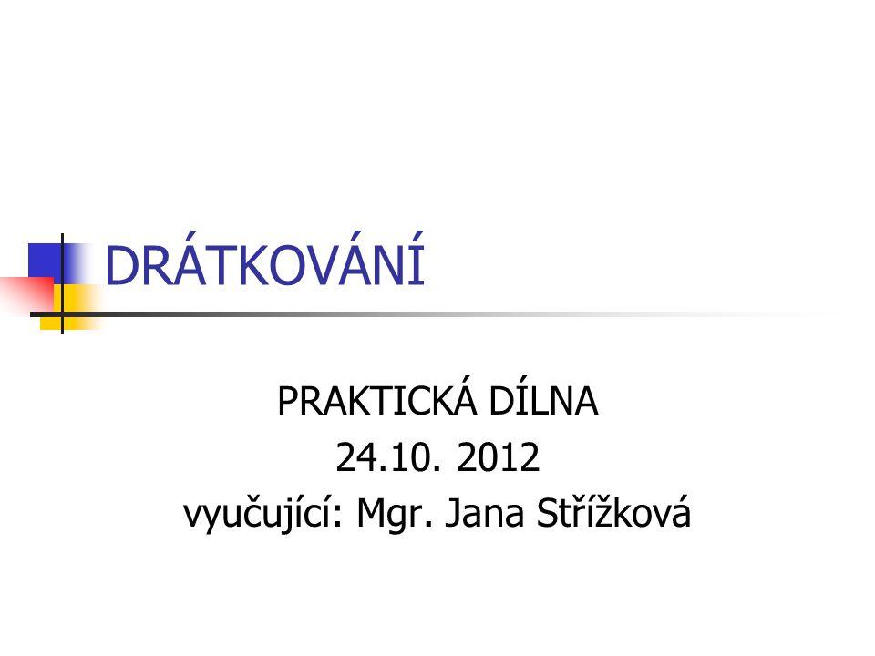 DRÁTKOVÁNÍ PRAKTICKÁ DÍLNA 24.10. 2012 vyučující: Mgr. Jana Střížková