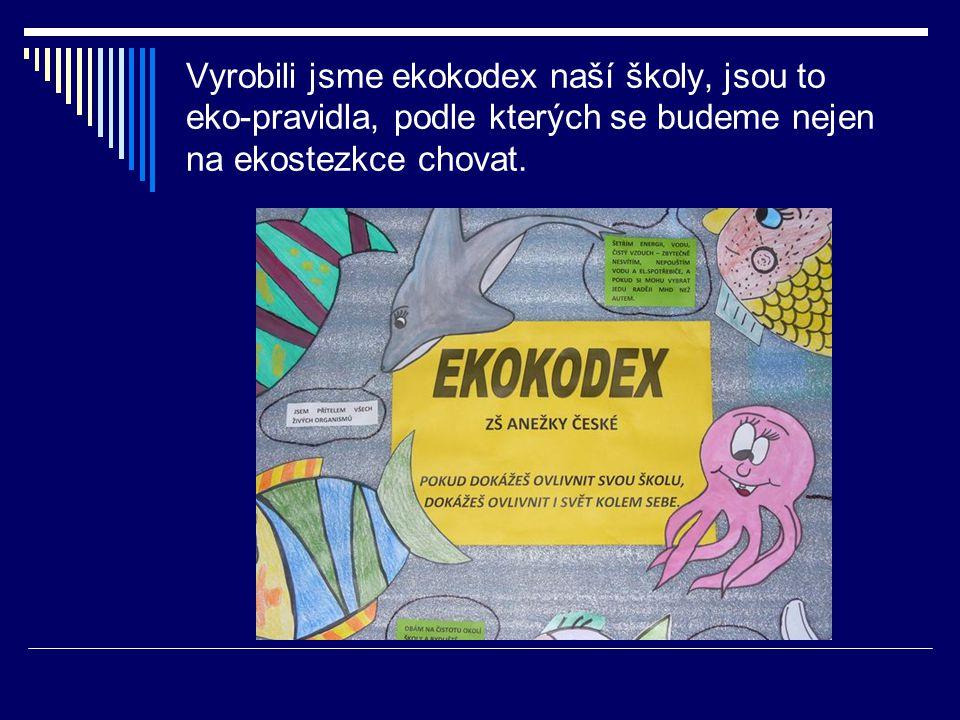 Vyrobili jsme ekokodex naší školy, jsou to eko-pravidla, podle kterých se budeme nejen na ekostezkce chovat.
