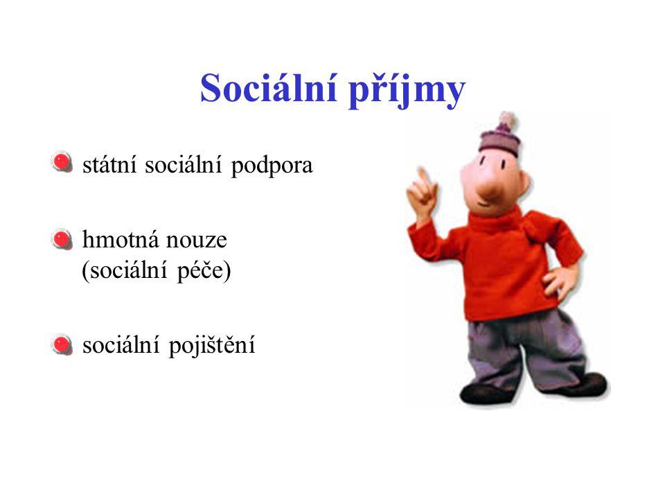 Sociální příjmy státní sociální podpora hmotná nouze (sociální péče) sociální pojištění