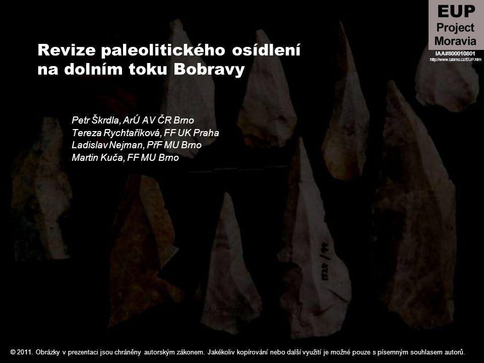 Revize paleolitického osídlení na dolním toku Bobravy Petr Škrdla, ArÚ AV ČR Brno Tereza Rychtaříková, FF UK Praha Ladislav Nejman, PřF MU Brno Martin