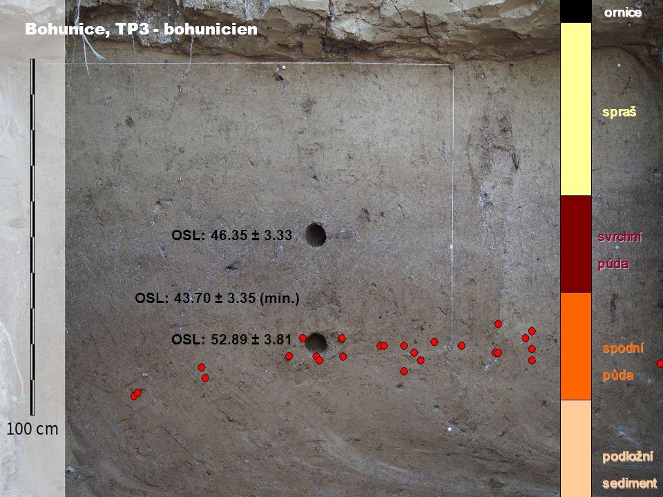 Bohunice, TP3 - bohunicienornicespraš svrchnípůda spodnípůda podložnísediment OSL: 46.35 ± 3.33 OSL: 43.70 ± 3.35 (min.) OSL: 52.89 ± 3.81
