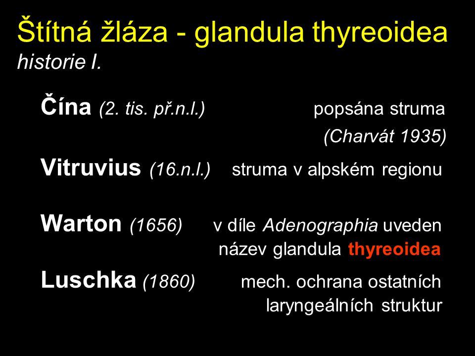 Štítná žláza - glandula thyreoidea historie I. Čína (2. tis. př.n.l.) popsána struma (Charvát 1935) Vitruvius (16.n.l.) struma v alpském regionu Warto