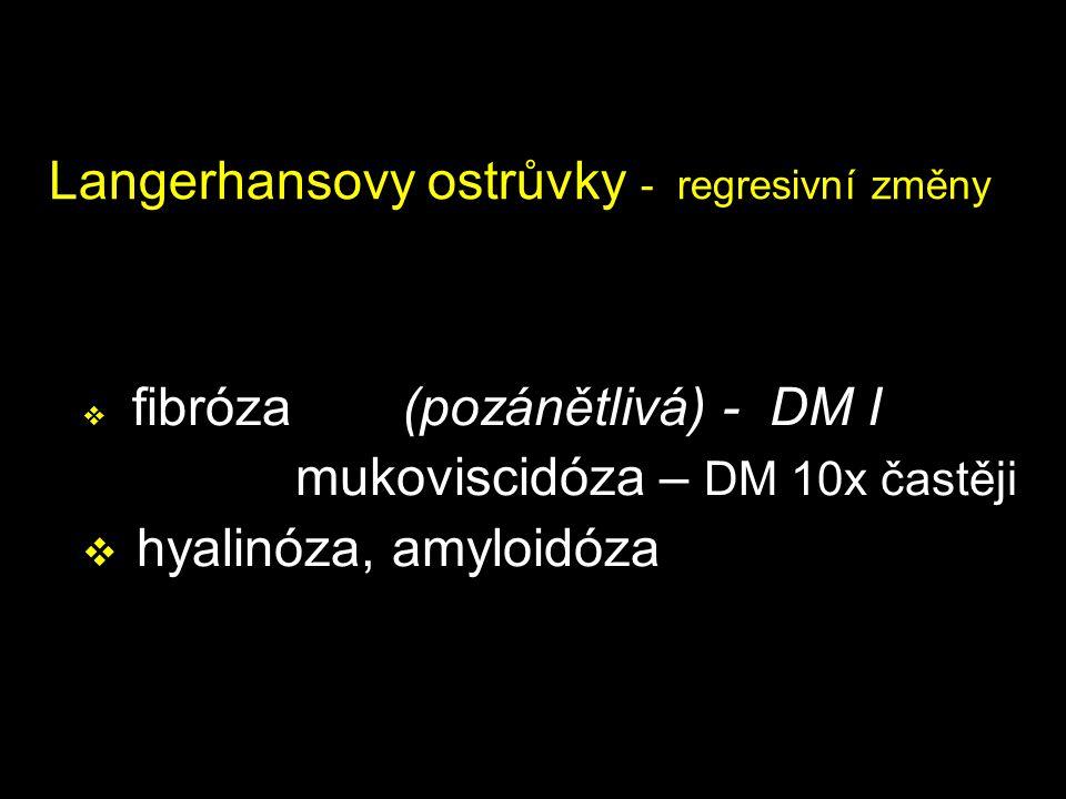 Langerhansovy ostrůvky - regresivní změny  fibróza (pozánětlivá) - DM I mukoviscidóza – DM 10x častěji  hyalinóza, amyloidóza