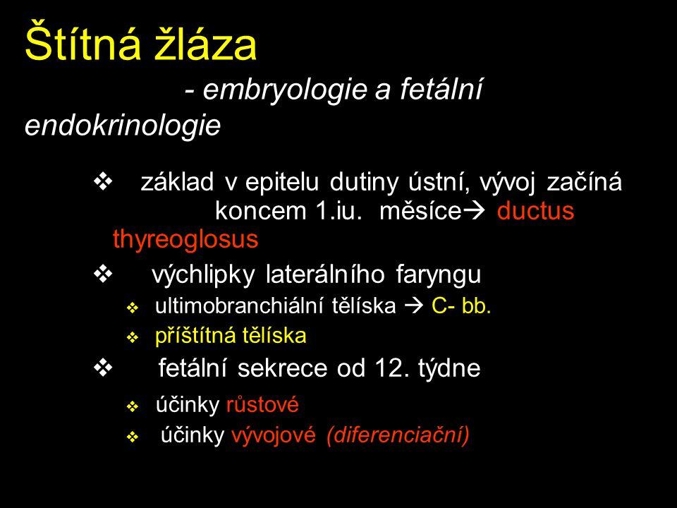 Langerhansovy ostrůvky - syndromy  hyperfunkční –hypoglykémie (slabost, pocení, třes, křeče, koma) –Zollinger-Ellison, Werner Morrison, glukagonomový  hypofunkční – inzulin hyperglykemie –akutní : polydipsie, ketoacidóza, koma, steatoza jater, otok mozku –chronická: diabetes mellitus: mikroangiopatie, makroangiopatie, neuropatie, retinopatie,embryopatie