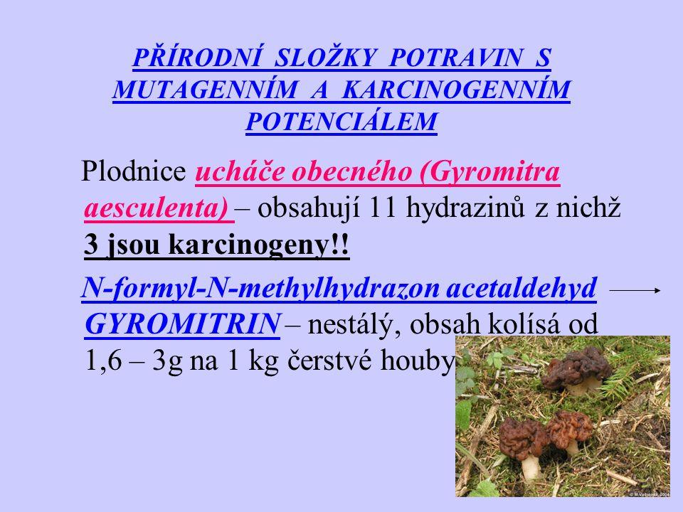 PŘÍRODNÍ SLOŽKY POTRAVIN S MUTAGENNÍM A KARCINOGENNÍM POTENCIÁLEM Plodnice ucháče obecného (Gyromitra aesculenta) – obsahují 11 hydrazinů z nichž 3 js