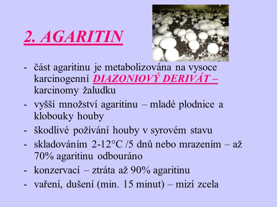 2. AGARITIN -část agaritinu je metabolizována na vysoce karcinogenní DIAZONIOVÝ DERIVÁT – karcinomy žaludku -vyšší množství agaritinu – mladé plodnice