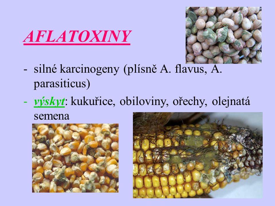 AFLATOXINY -silné karcinogeny (plísně A. flavus, A. parasiticus) -výskyt: kukuřice, obiloviny, ořechy, olejnatá semena