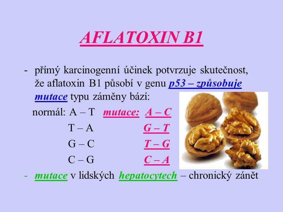 AFLATOXIN B1 -přímý karcinogenní účinek potvrzuje skutečnost, že aflatoxin B1 působí v genu p53 – způsobuje mutace typu záměny bází: normál: A – T mut