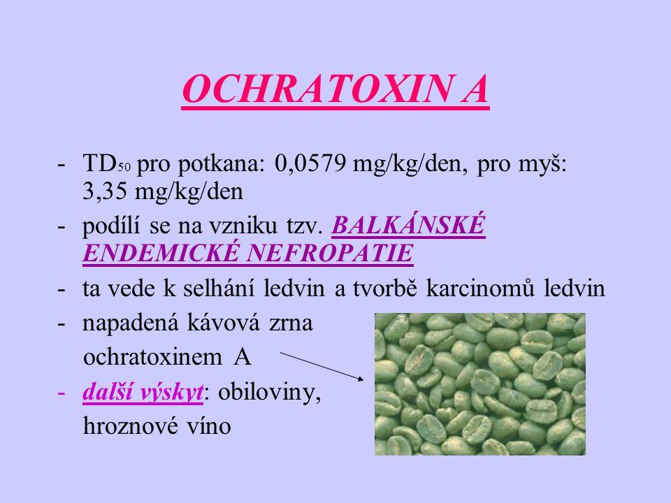 OCHRATOXIN A -TD 50 pro potkana: 0,0579 mg/kg/den, pro myš: 3,35 mg/kg/den -podílí se na vzniku tzv. BALKÁNSKÉ ENDEMICKÉ NEFROPATIE -ta vede k selhání