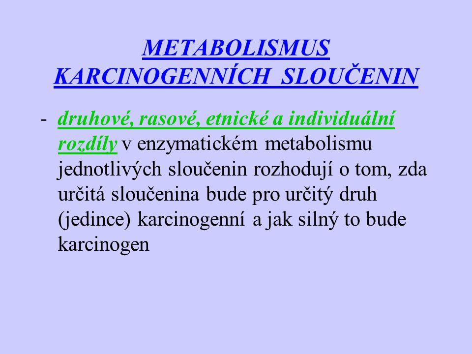 METABOLISMUS KARCINOGENNÍCH SLOUČENIN - druhové, rasové, etnické a individuální rozdíly v enzymatickém metabolismu jednotlivých sloučenin rozhodují o