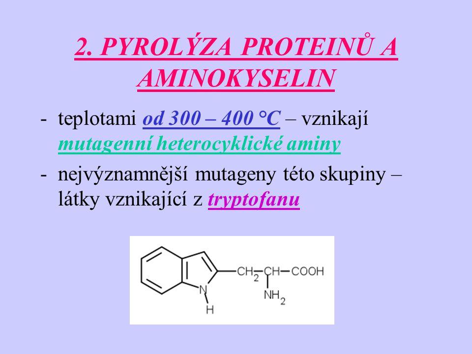 2. PYROLÝZA PROTEINŮ A AMINOKYSELIN -teplotami od 300 – 400 °C – vznikají mutagenní heterocyklické aminy -nejvýznamnější mutageny této skupiny – látky