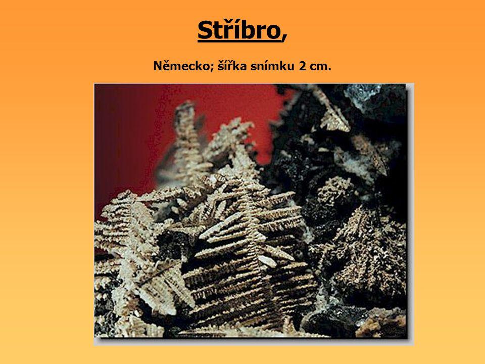 Jantar Litva; velikost vzorku 7 x 5 cm.