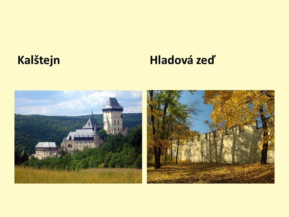 Obrazový materiál Pludek, A.Český král Karel. 2. vyd.