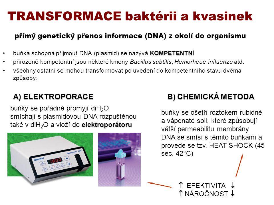 TRANSFORMACE baktérii a kvasinek přímý genetický přenos informace (DNA) z okolí do organismu KOMPETENTNÍbuňka schopná přijmout DNA (plasmid) se nazývá