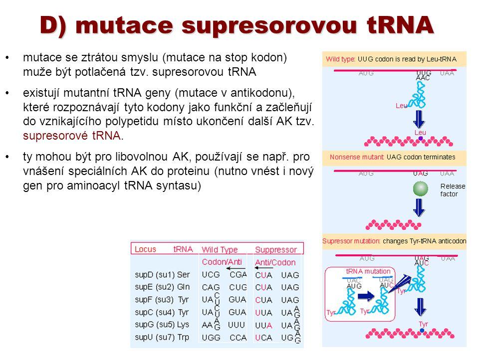 D) mutace supresorovou tRNA mutace se ztrátou smyslu (mutace na stop kodon) muže být potlačená tzv. supresorovou tRNA existují mutantní tRNA geny (mut
