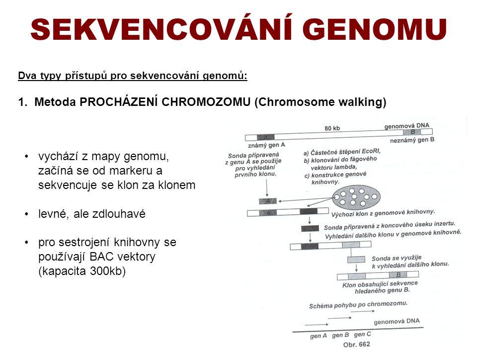 Dva typy přístupů pro sekvencování genomů: 1. Metoda PROCHÁZENÍ CHROMOZOMU (Chromosome walking) SEKVENCOVÁNÍ GENOMU vychází z mapy genomu, začíná se o