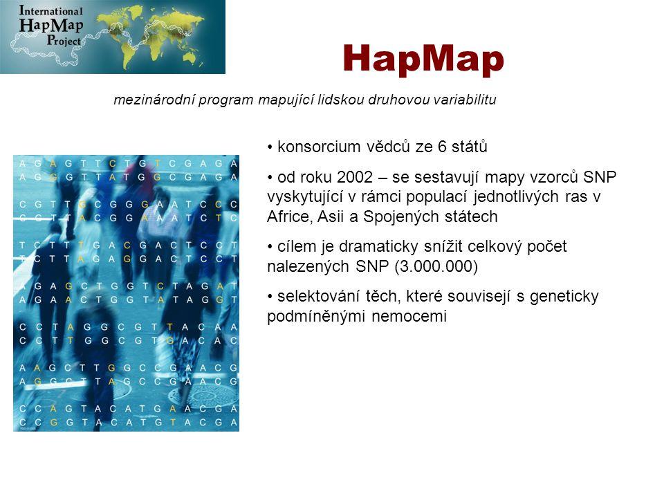 HapMap mezinárodní program mapující lidskou druhovou variabilitu konsorcium vědců ze 6 států od roku 2002 – se sestavují mapy vzorců SNP vyskytující v