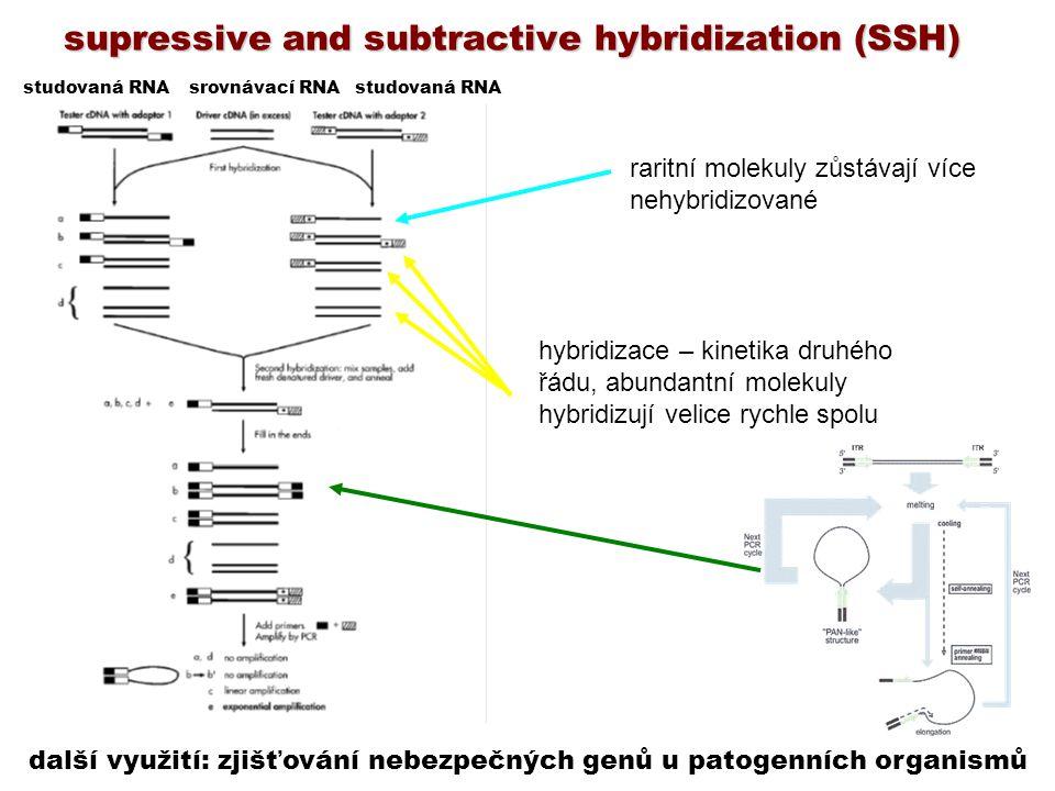 supressive and subtractive hybridization (SSH) hybridizace – kinetika druhého řádu, abundantní molekuly hybridizují velice rychle spolu raritní moleku