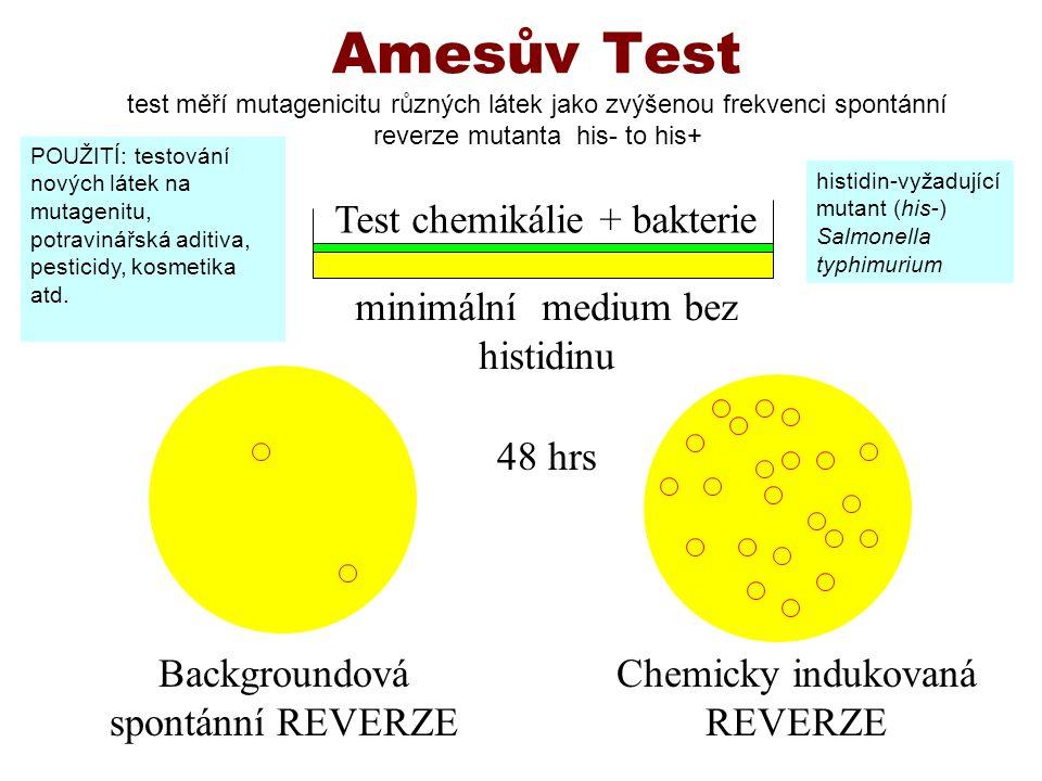Amesův Test test měří mutagenicitu různých látek jako zvýšenou frekvenci spontánní reverze mutanta his- to his+ Backgroundová spontánní REVERZE Chemic