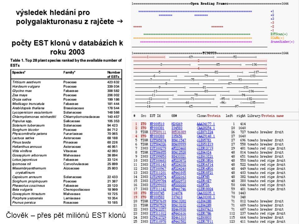 výsledek hledání pro polygalakturonasu z rajčete  počty EST klonů v databázích k roku 2003 Člověk – přes pět miliónů EST klonů
