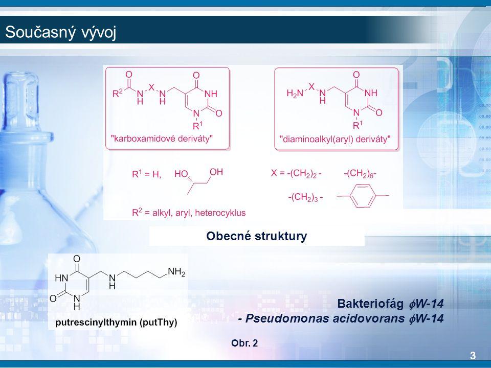 3 Současný vývoj Obecné struktury Bakteriofág  W-14 - Pseudomonas acidovorans  W-14 Obr. 2