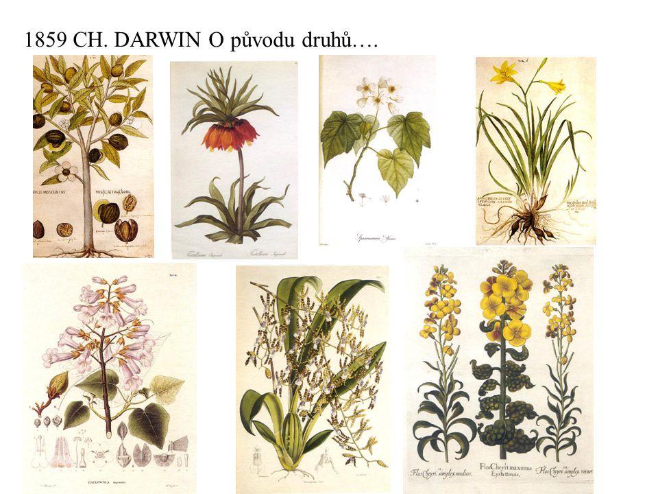 1859 CH. DARWIN O původu druhů….