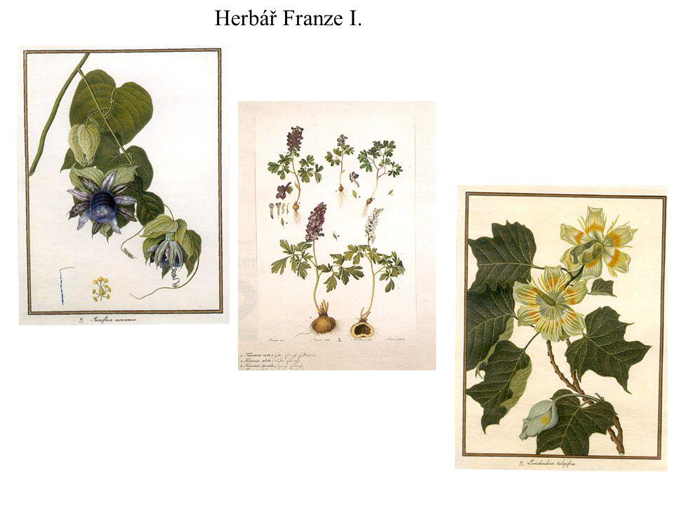 Herbář Franze I.