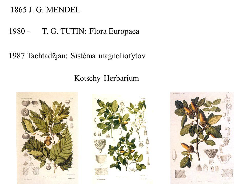1865 J. G. MENDEL 1980 - T. G. TUTIN: Flora Europaea 1987 Tachtadžjan: Sistěma magnoliofytov Kotschy Herbarium