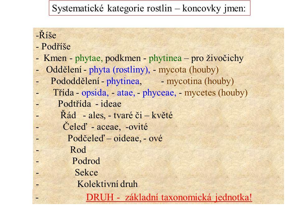 Systematické kategorie rostlin – koncovky jmen: -Říše - Podříše - Kmen - phytae, podkmen - phytinea – pro živočichy - Oddělení - phyta (rostliny), - m