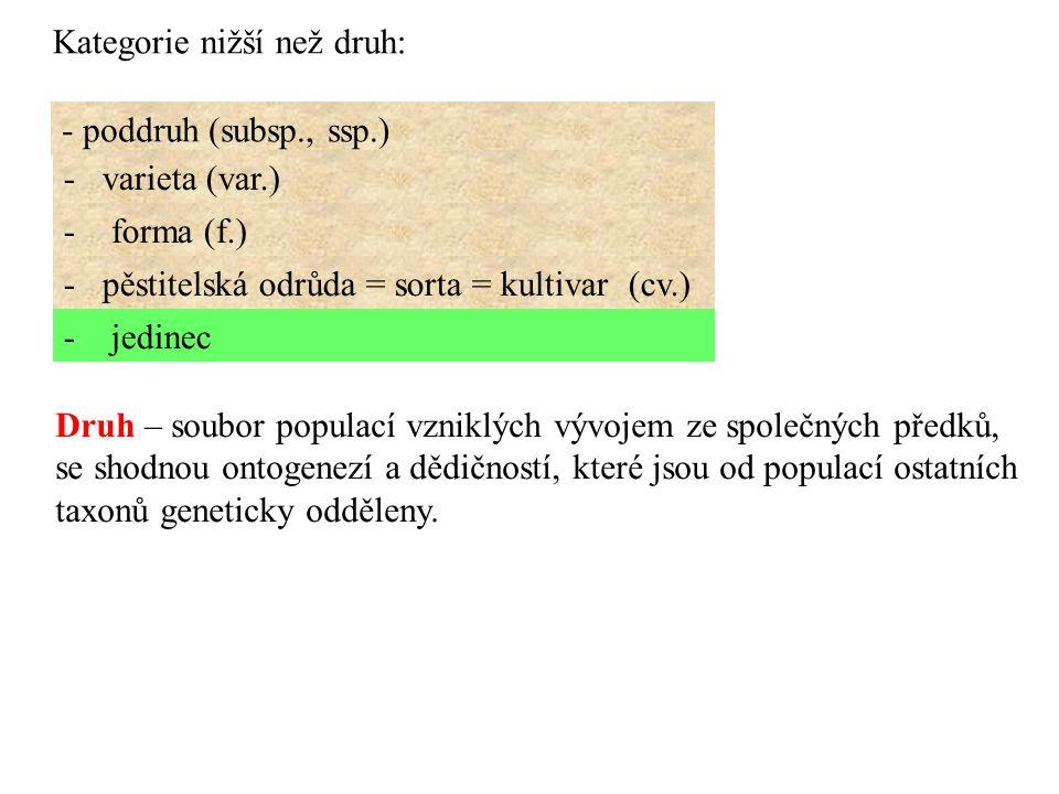 Kategorie nižší než druh: - poddruh (subsp., ssp.) - varieta (var.) - forma (f.) - pěstitelská odrůda = sorta = kultivar (cv.) - jedinec Druh – soubor