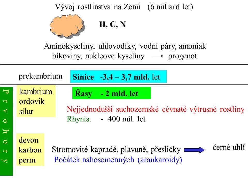 Vývoj rostlinstva na Zemi (6 miliard let) Aminokyseliny, uhlovodíky, vodní páry, amoniak bíkoviny, nukleové kyseliny progenot H, C, N prekambrium Sini