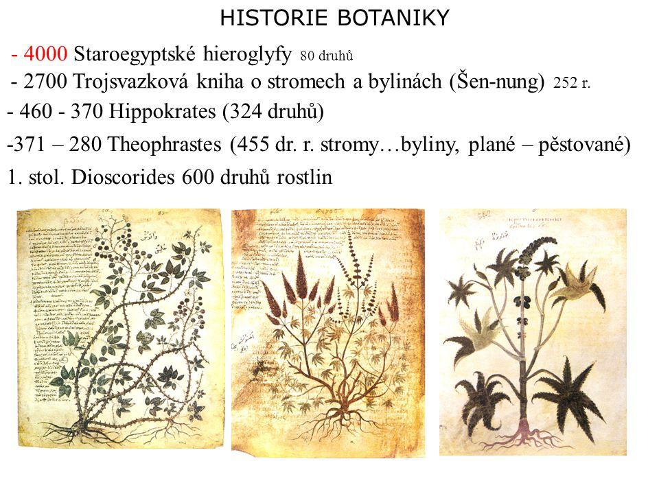 HISTORIE BOTANIKY - 4000 Staroegyptské hieroglyfy 80 druhů - 2700 Trojsvazková kniha o stromech a bylinách (Šen-nung) 252 r. - 460 - 370 Hippokrates (