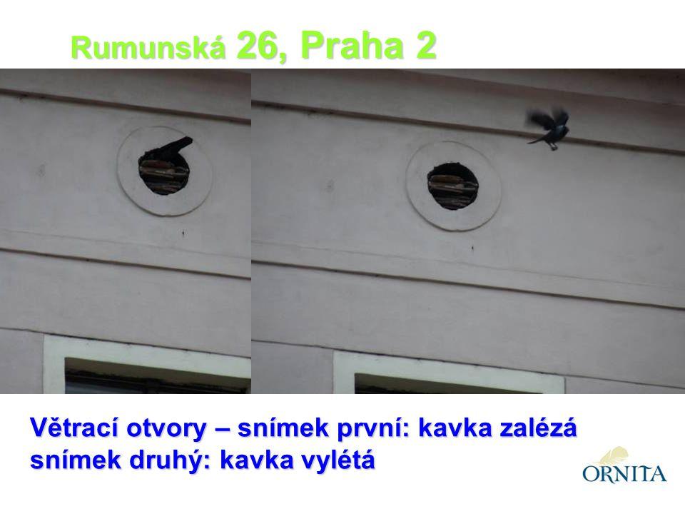 Větrací otvory – snímek první: kavka zalézá snímek druhý: kavka vylétá Rumunská 26, Praha 2