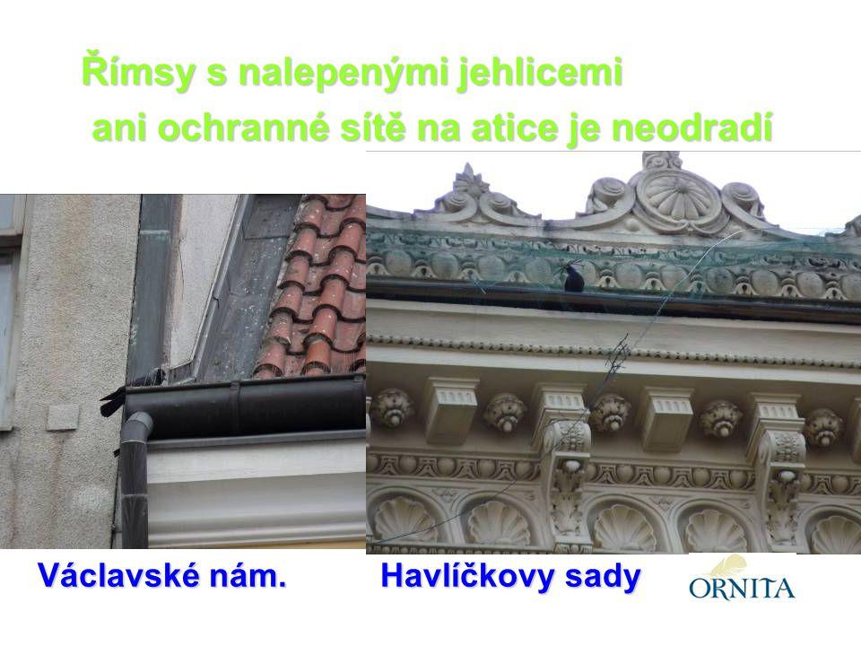 Václavské nám.