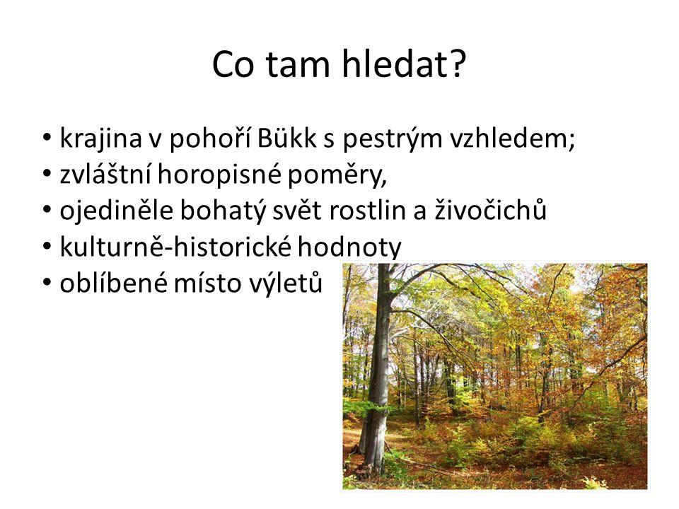 Co tam hledat? krajina v pohoří Bükk s pestrým vzhledem; zvláštní horopisné poměry, ojediněle bohatý svět rostlin a živočichů kulturně-historické hodn
