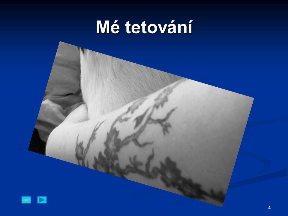 Obsah 4 Mé tetování