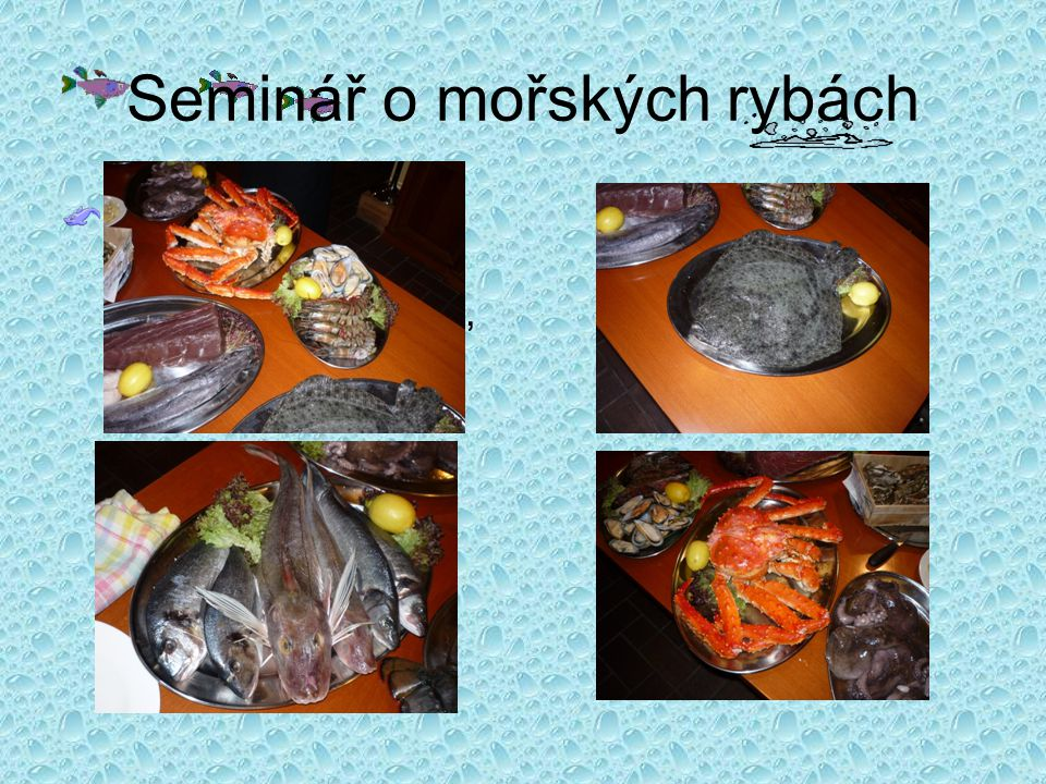 Seminář o mořských rybách Měli jsme možnost vidět chobotnice, slávky,kraba, lososa, krevety a spoustu dalších…