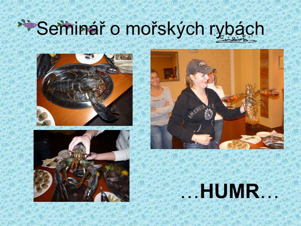 Seminář o mořských rybách Dále jsme mohli ochutnat ústřice… jediná odvážná však byla Lucka…říkala, že to bylo chutné…no nevím no… A JE TAM …