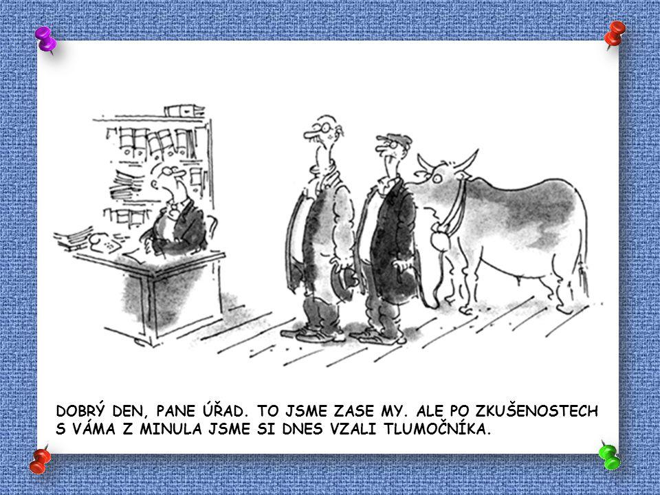 ZPRÁVA O SITUACI NA ČESKÉ POLITICKÉ SCÉNĚ JE SIMULTÁNNĚ TLUMOČENA DO ZNAKOVÉ ŘEČI.